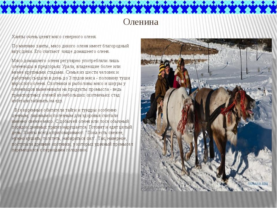 Оленина Ханты очень ценят мясо северного оленя. По мнению ханты, мясо дикого...