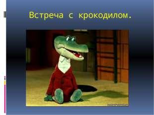 Встреча с крокодилом.