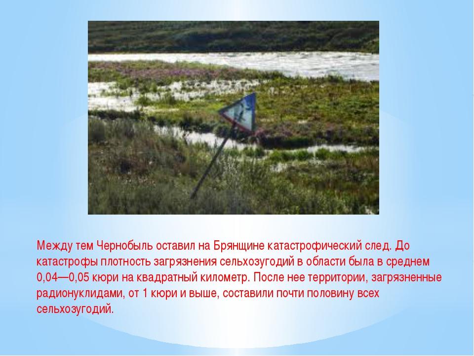 Между тем Чернобыль оставил на Брянщине катастрофический след. До катастрофы...