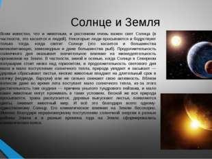 Солнце и Земля Всем известно, что и животным, и растениям очень важен свет Со