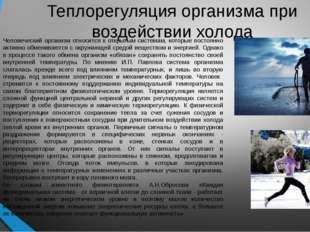 Теплорегуляция организма при воздействии холода Человеческий организм относит