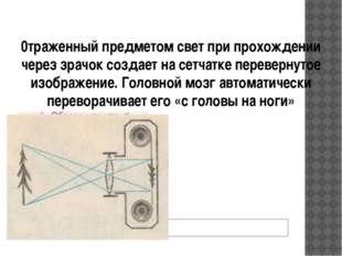0траженный предметом свет при прохождении через зрачок создает на сетчатке пе