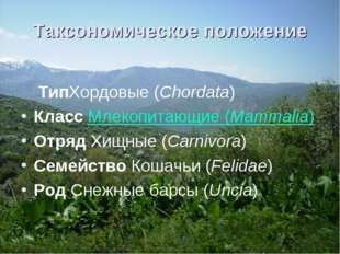 Таксономическое положение ТипХордовые(Chordata) Класс Млекопитающие(Mammali