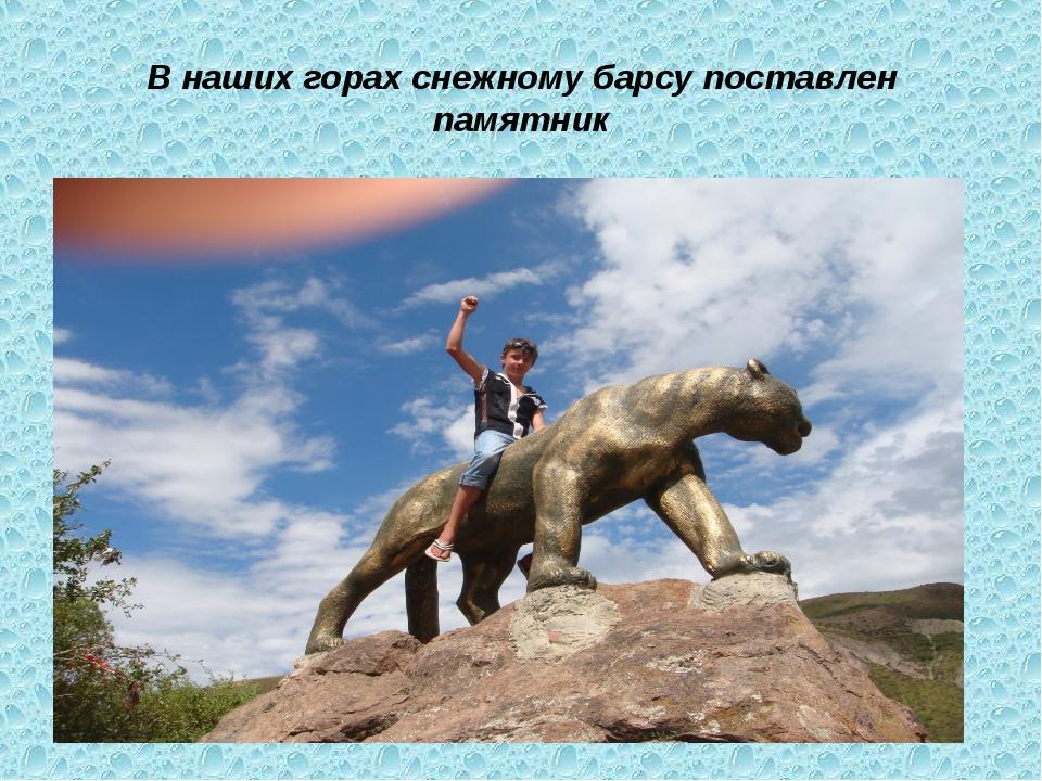 В наших горах снежному барсу поставлен памятник