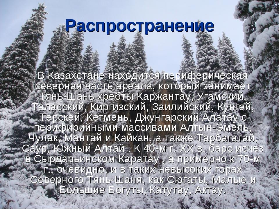 Распространение В Казахстане находится периферическая северная часть ареала,...