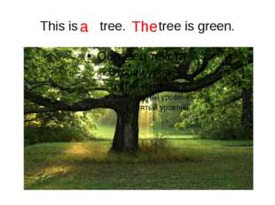 This is tree. tree is green. a The
