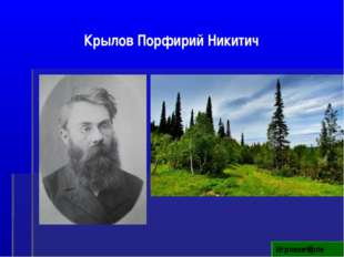 Игровое поле Крылов Порфирий Никитич