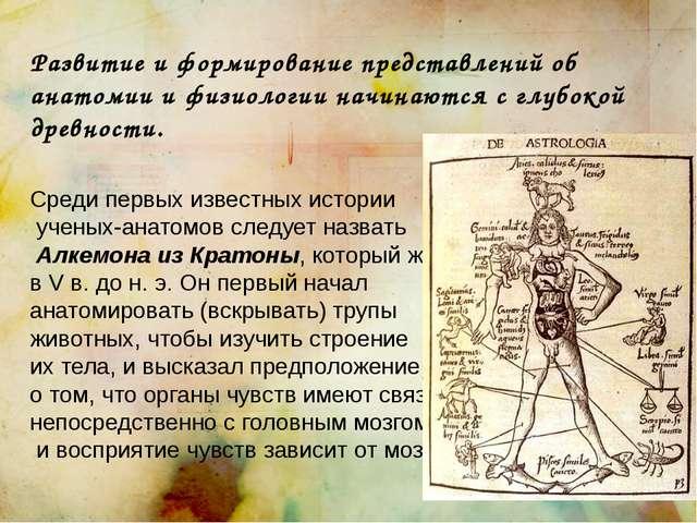 Развитие и формирование представлений об анатомии и физиологии начинаются с г...
