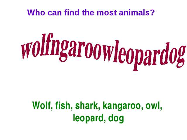 Who can find the most animals? Wolf, fish, shark, kangaroo, owl, leopard, dog