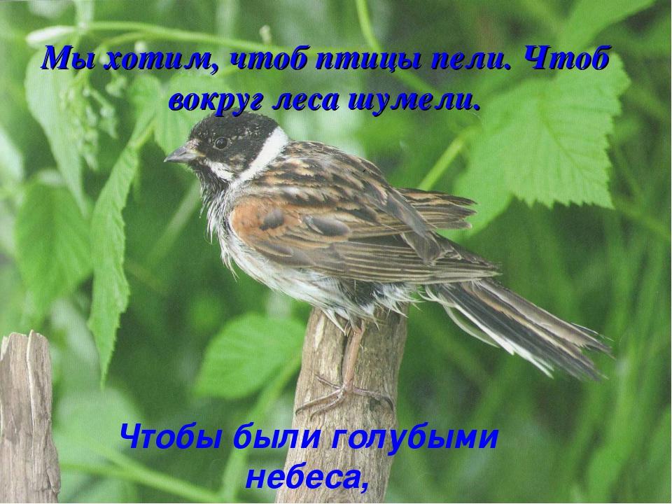 Как написать запоют птицы