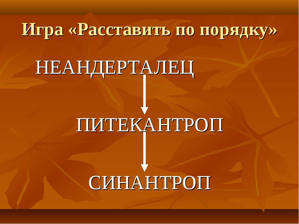 Игра «Расставить по порядку» НЕАНДЕРТАЛЕЦ ПИТЕКАНТРОП СИНАНТРОП