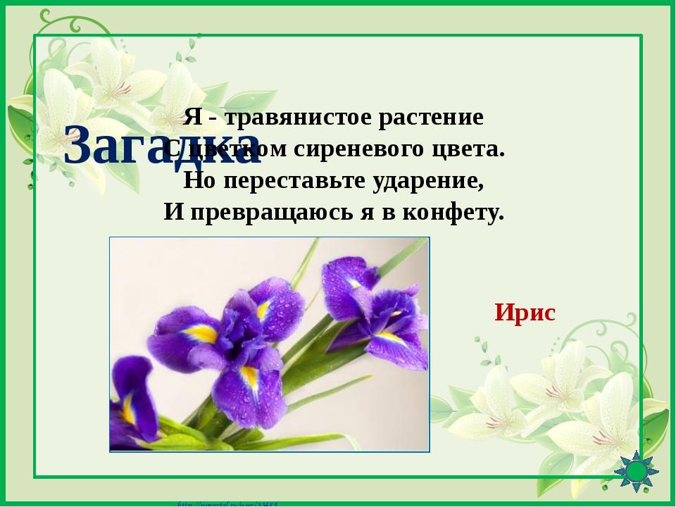 Интернет-ресурсы http://pedsovet.su/load/391-1-0-41601 - Шаблон «8 Марта» (ц...
