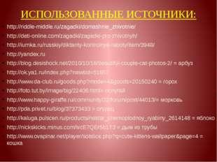 ИСПОЛЬЗОВАННЫЕ ИСТОЧНИКИ: http://riddle-middle.ru/zagadki/domashnie_zhivotnie