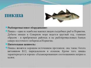 пикша Рыбопромысловое оборудование: Пикша - один из наиболее важных видов съе
