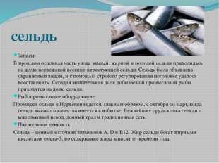 сельдь Запасы: В прошлом основная часть улова зимней, жирной и молодой сельди