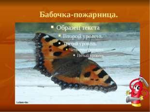 Бабочка-пожарница.