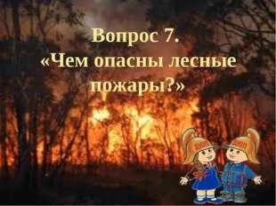Вопрос 7. «Чем опасны лесные пожары?»