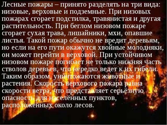 Лесные пожары – принято разделять на три вида: низовые, верховые и подземные....
