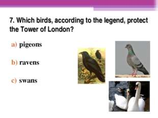 7. Which birds, according to the legend, protect the Tower of London? pigeons