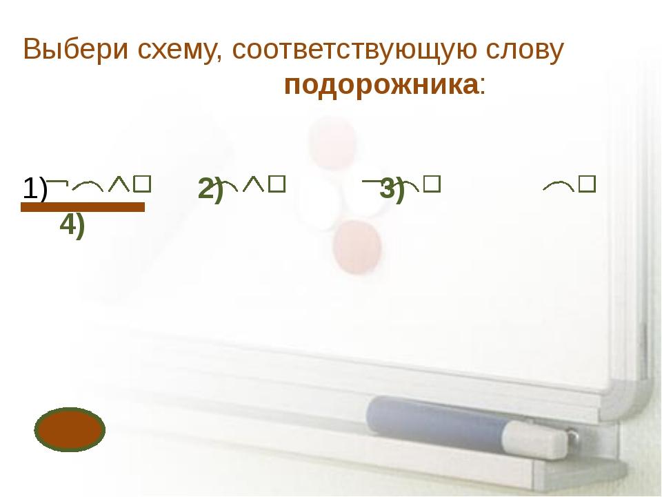 Выбери схему, соответствующую слову подорожника: 2) 3) 4)