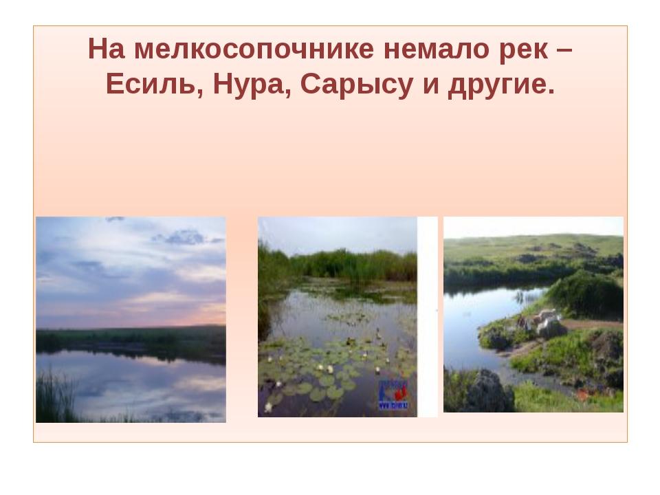 На мелкосопочнике немало рек – Есиль, Нура, Сарысу и другие.