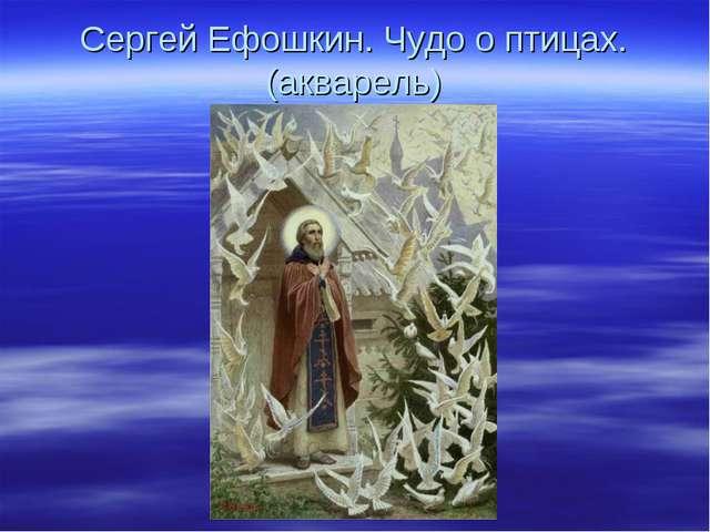 Сергей Ефошкин. Чудо о птицах. (акварель)