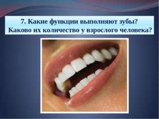 7. Какие функции выполняют зубы? Каково их количество у взрослого человека?