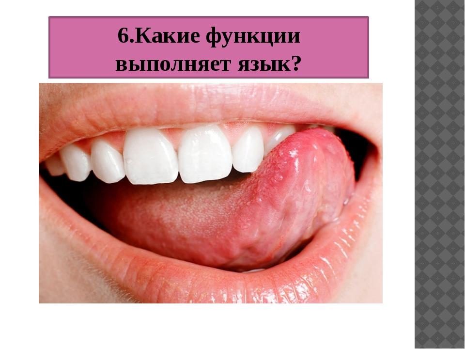 6.Какие функции выполняет язык?