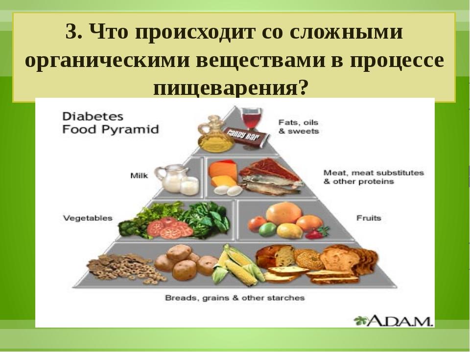 3. Что происходит со сложными органическими веществами в процессе пищеварения?