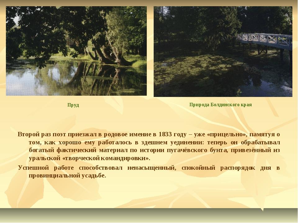 Второй раз поэт приезжал в родовое имение в 1833 году – уже «прицельно», памя...
