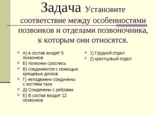 Задача Установите соответствие между особенностями позвонков и отделами позво