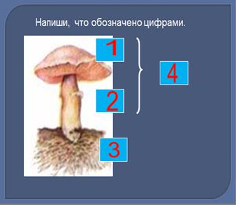 hello_html_15da3579.png