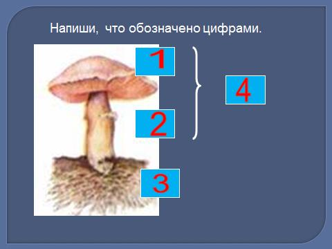 hello_html_25c6d09e.png