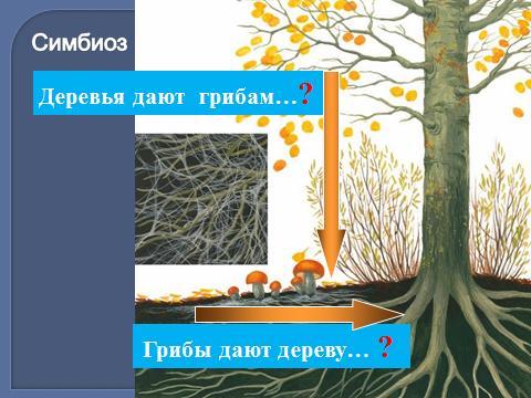 hello_html_mfb8e9f7.png
