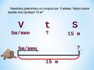 Черепаха двигалась со скоростью 5 м/мин. Через какое время она пройдет 15 м?