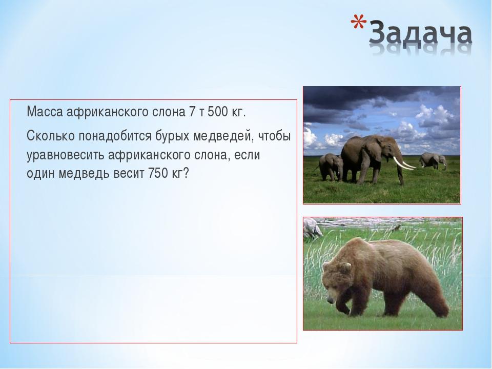 Масса африканского слона 7 т 500 кг. Сколько понадобится бурых медведей, чт...