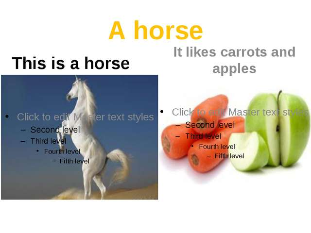 A horse This is a horse It likes carrots and apples