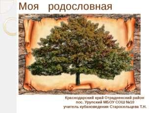 Моя родословная Краснодарский край Отрадненский район пос. Урупский МБОУ СОШ