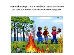 Лесной пожар – это стихийное, неуправляемое распространение огня по&nbs