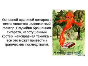 Основной причиной пожаров в лесах является человеческий фактор. Случайно брош