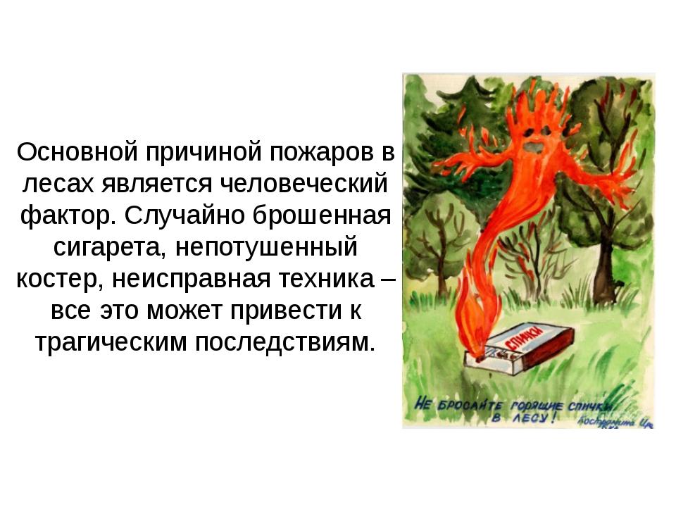 Основной причиной пожаров в лесах является человеческий фактор. Случайно брош...
