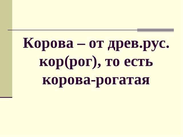 Корова – от древ.рус. кор(рог), то есть корова-рогатая