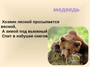 Хозяин лесной просыпается весной, А зимой под вьюжный вой Спит в избушке сне