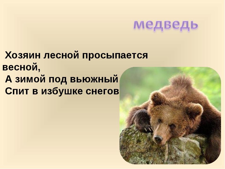 Хозяин лесной просыпается весной, А зимой под вьюжный вой Спит в избушке сне...