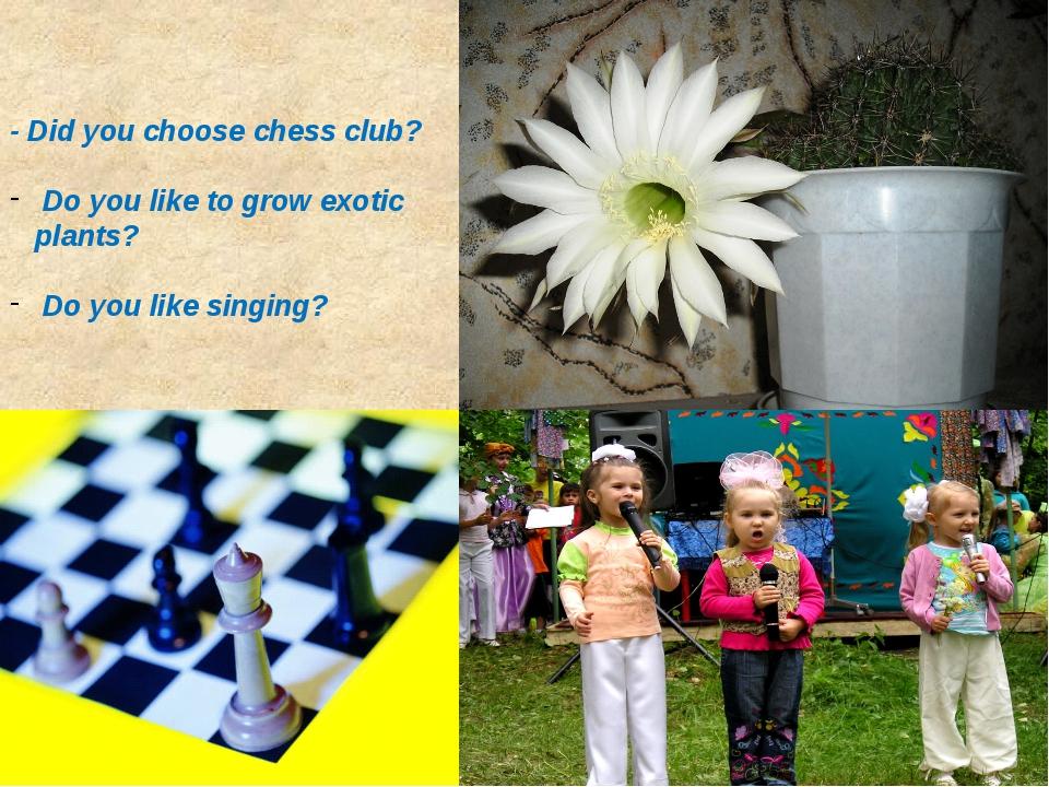 - Did you choose chess club? Do you like to grow exotic plants? Do you like s...