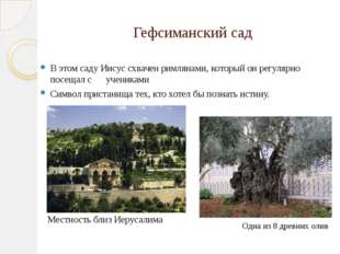 Гефсиманский сад В этом саду Иисус схвачен римлянами, который он регулярно по
