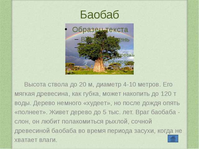 Интернет-ресурсы http://fon.presen.ru/46-shablon-temnyy-zelenyy-chay-2-130210...