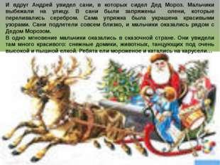 И вдруг Андрей увидел сани, в которых сидел Дед Мороз. Мальчики выбежали на у