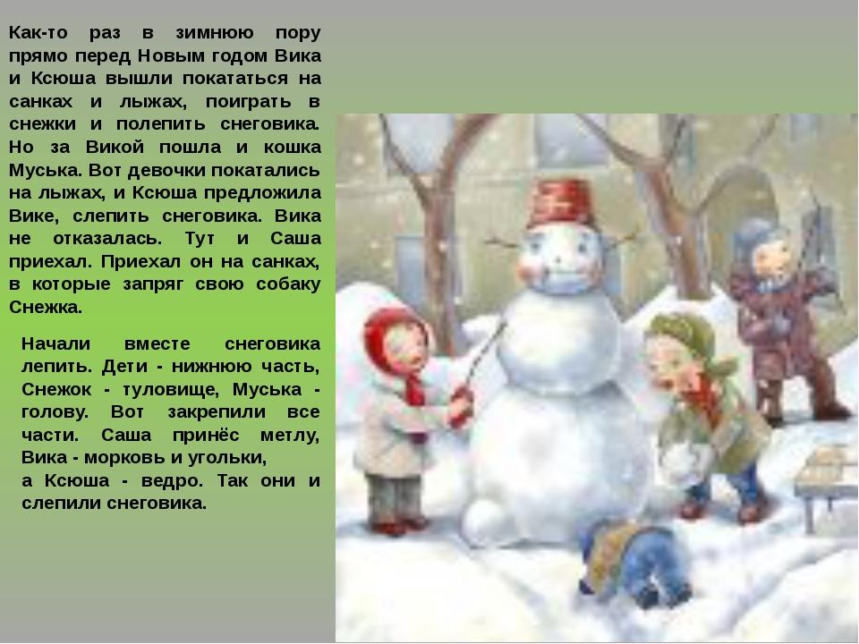 Как-то раз в зимнюю пору прямо перед Новым годом Вика и Ксюша вышли покататьс...
