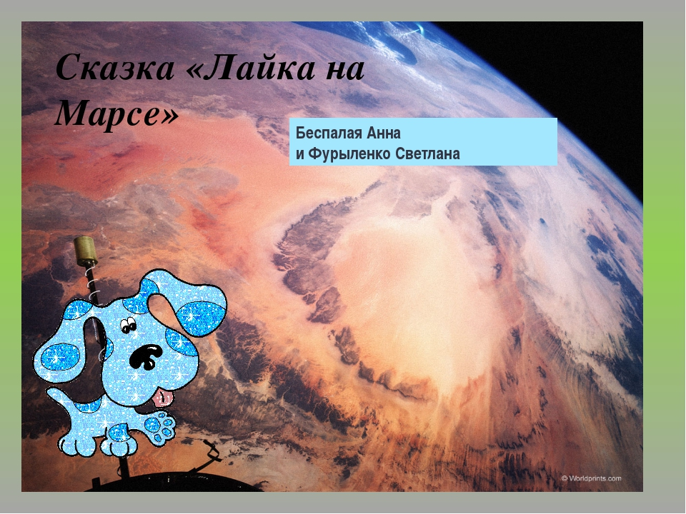 Беспалая Анна и Фурыленко Светлана Сказка «Лайка на Марсе» Беспалая Анна и Фу...